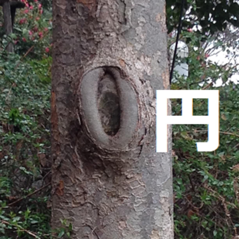 年会費無料クレカ(コスト0円)