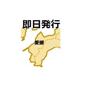 愛媛即日発行クレジットカード
