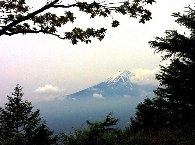 即日発行カード山梨からの富士の眺め