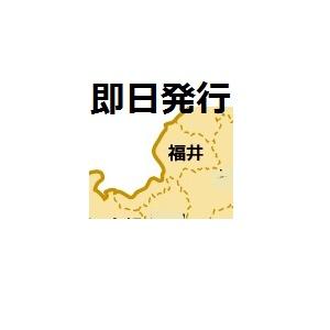 福井で即日発行クレジットカード