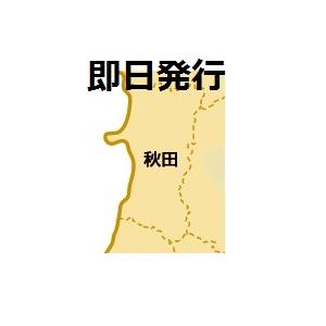 秋田で即日発行できるクレジットカード