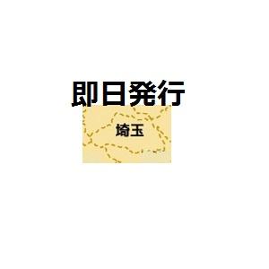 埼玉で即日発行クレジットカード