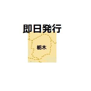 栃木で即日発行クレジットカード