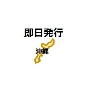 沖縄即日発行クレジットカード