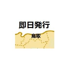 鳥取で即日発行クレジットカード